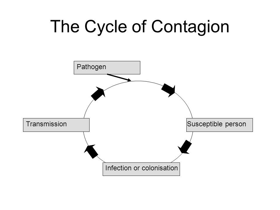 The Cycle of Contagion Susceptible person Infection or colonisation Transmission Pathogen