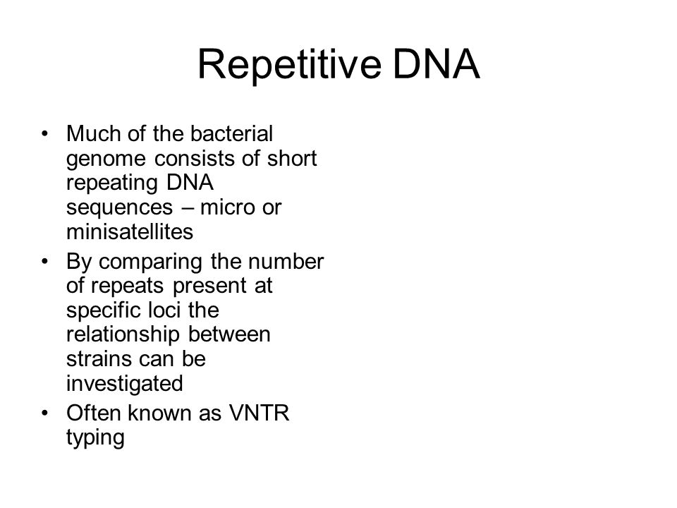 Repetitive DNA Much of the bacterial genome consists of short repeating DNA sequences – micro or minisatellites By comparing the number of repeats pre