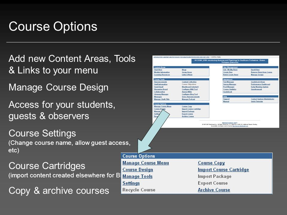 Course Options Add new Content Areas, Tools & Links to your menu Manage Course Design Access for your students, guests & observers Course Settings (Change course name, allow guest access, etc) Course Cartridges (import content created elsewhere for BB) Copy & archive courses