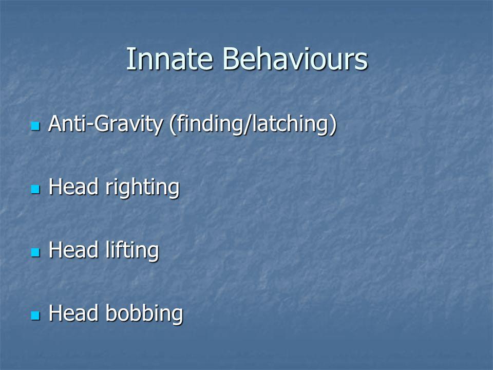 Innate Behaviours Anti-Gravity (finding/latching) Anti-Gravity (finding/latching) Head righting Head righting Head lifting Head lifting Head bobbing Head bobbing