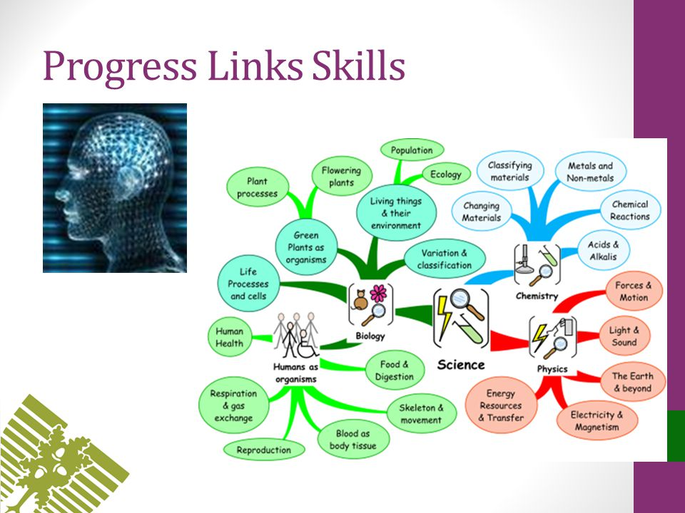 Progress Links Skills