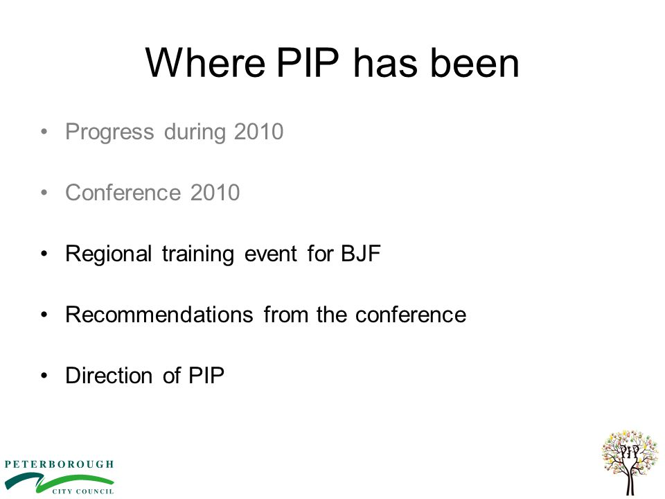 Where PIP has been Progress during 2010 Conference 2010 Regional training event for BJF Recommendations from the conference Direction of PIP