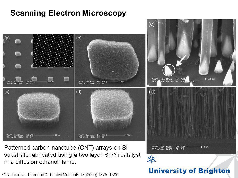 Scanning Electron Microscopy © N. Liu et al. Diamond & Related Materials 18 (2009) 1375–1380 Patterned carbon nanotube (CNT) arrays on Si substrate fa