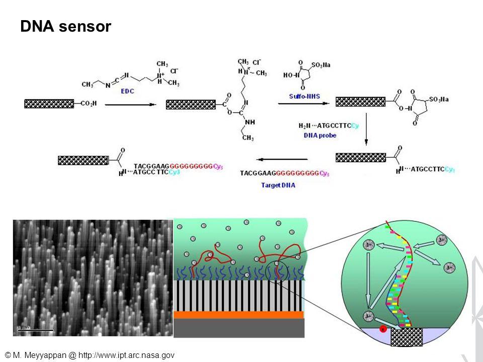 DNA sensor © M. Meyyappan @ http://www.ipt.arc.nasa.gov