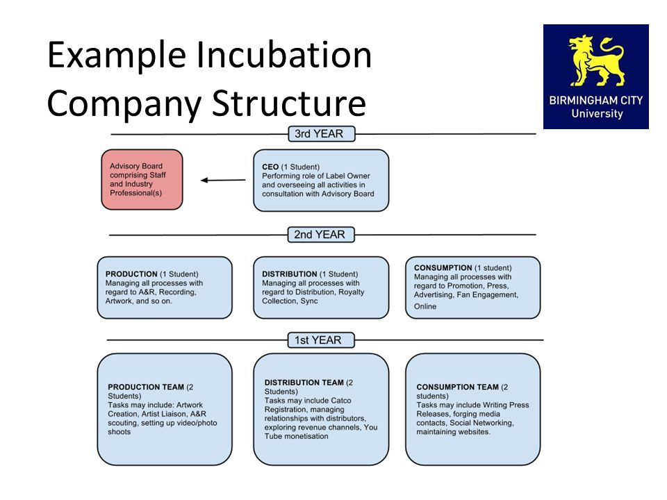 Example Incubation Company Structure
