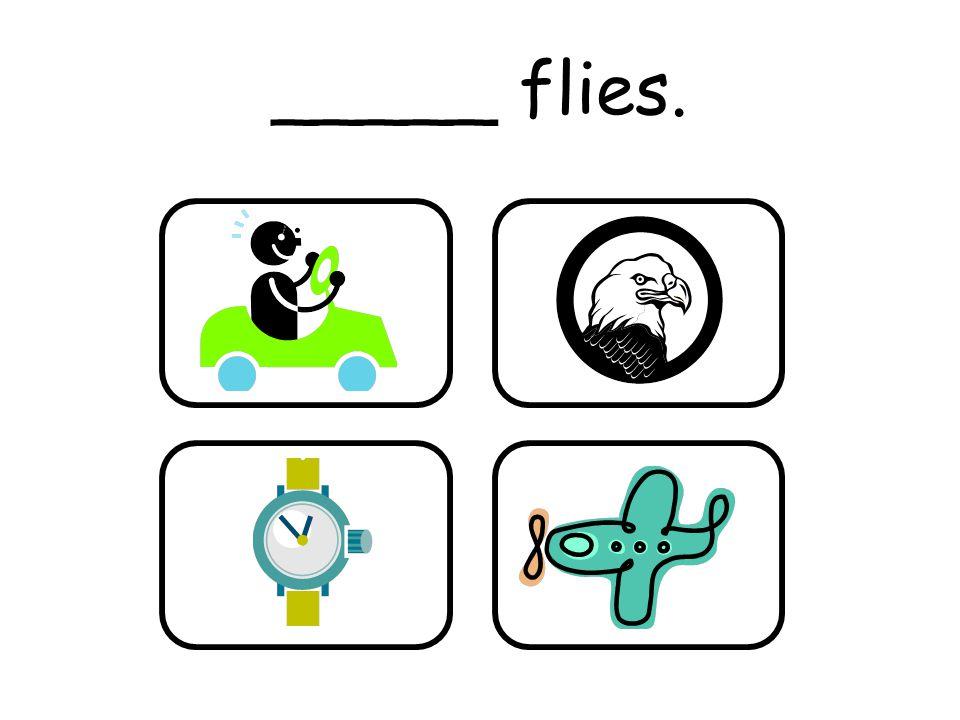 _____ flies.