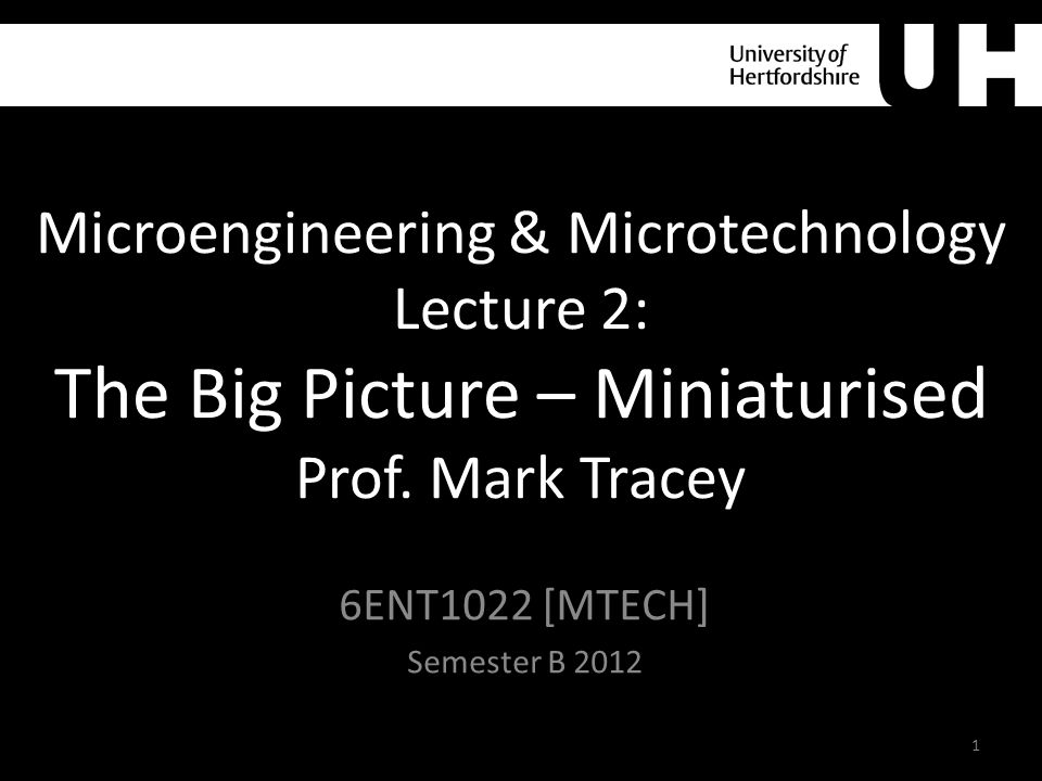 Microengineering & Microtechnology Lecture 2: The Big Picture – Miniaturised Prof.