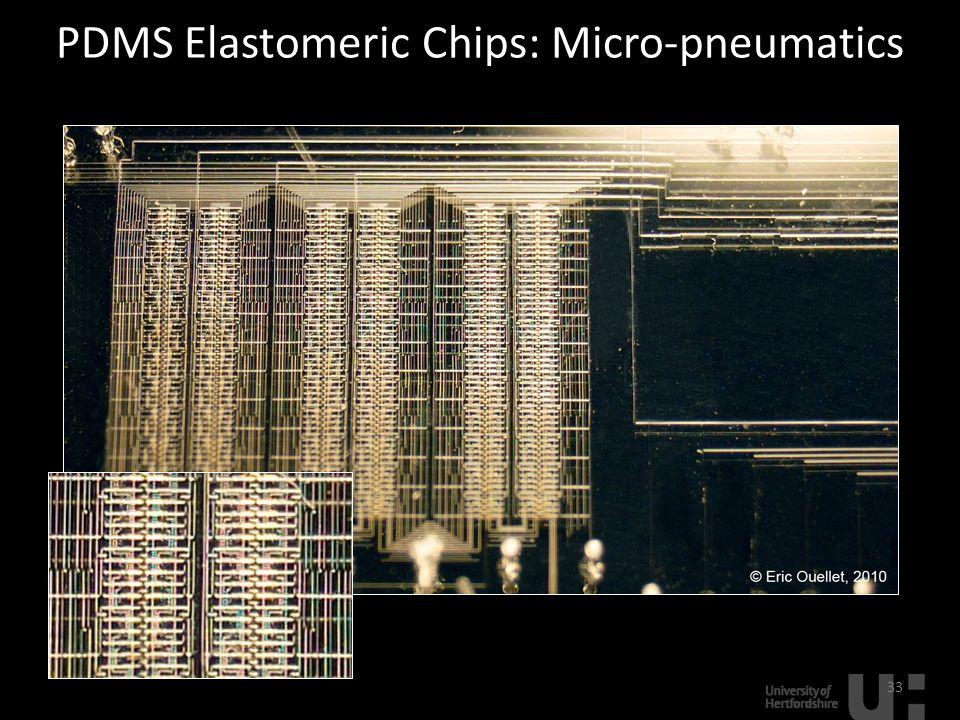 PDMS Elastomeric Chips: Micro-pneumatics 33