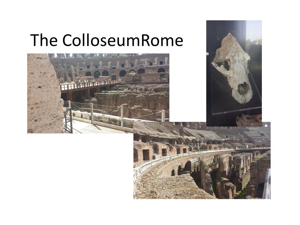 The ColloseumRome