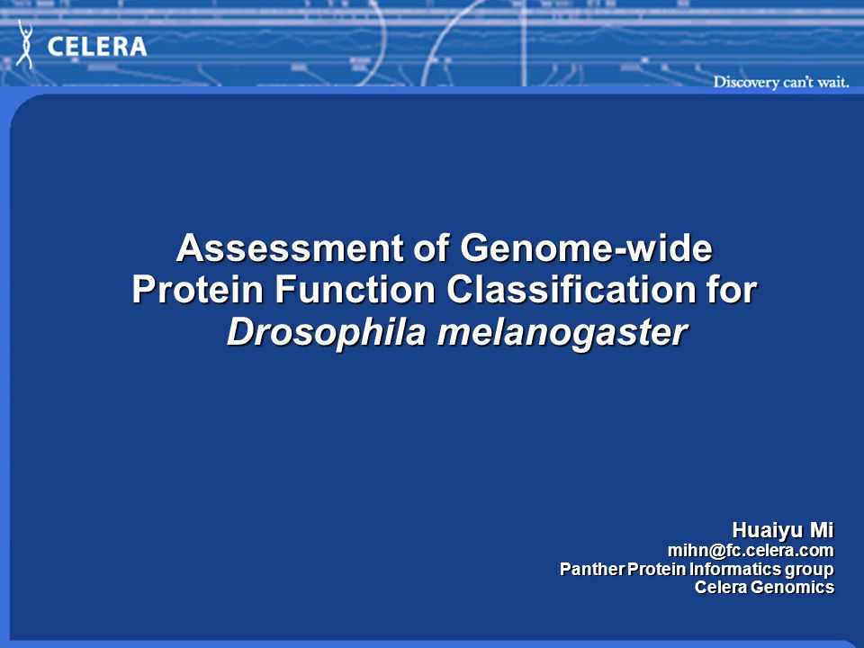 Assessment of Genome-wide Protein Function Classification for Drosophila melanogaster Huaiyu Mi Panther Protein Informatics group Celera Genomics