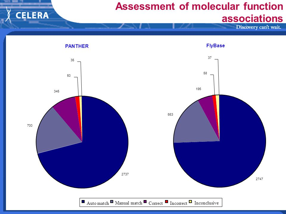 Assessment of molecular function associations FlyBase 2747 663 195 58 37 2737 700 345 50 35 Auto match Manual match CorrectIncorrect Inconclusive PANTHER