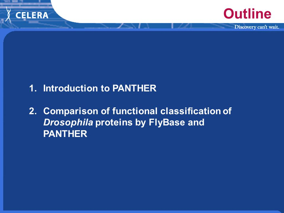 Outline 1.Introduction to PANTHER 2.Comparison of functional classification of Drosophila proteins by FlyBase and PANTHER