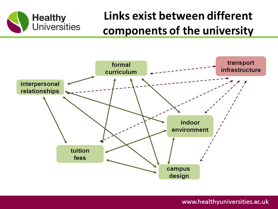 Links exist between different components of the university www.healthyuniversities.ac.uk formal curriculum interpersonal relationships tuition fees campus design indoor environment transport infrastructure