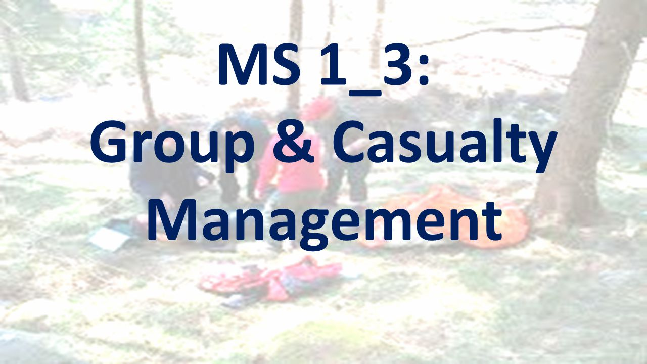 MS 1_3: Group & Casualty Management