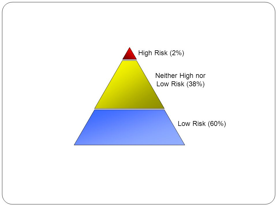High Risk (2%) Neither High nor Low Risk (38%) Low Risk (60%)