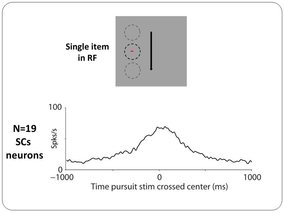 N=19 SCs neurons Single item in RF