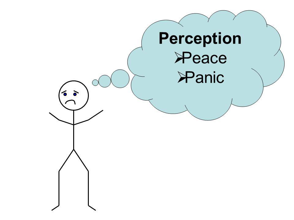 Perception  Peace  Panic