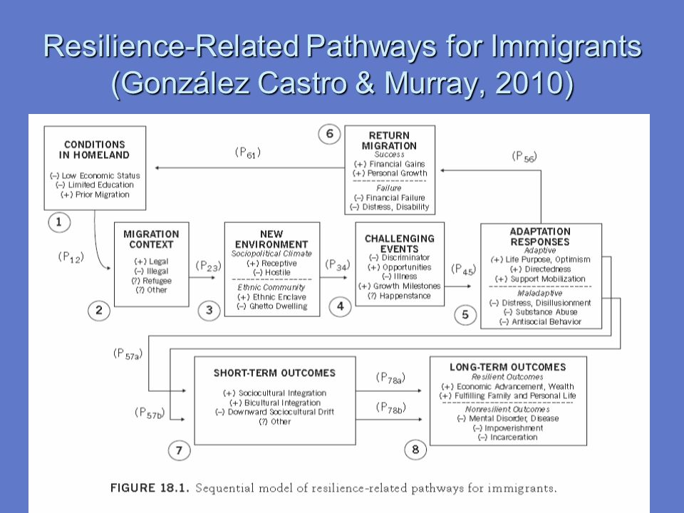 Resilience-Related Pathways for Immigrants (González Castro & Murray, 2010)