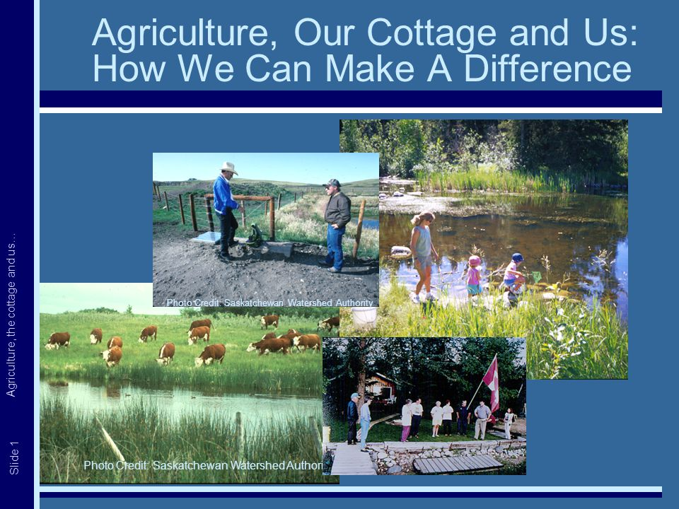 Agriculture, the cottage and us… Slide 1 Agriculture, Our Cottage and Us: How We Can Make A Difference Photo Credit: Saskatchewan Watershed Authority