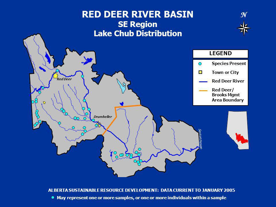 RED DEER RIVER BASIN SE Region Lake Chub Distribution N Saskatchewan Alberta LEGEND Species Present Town or City Red Deer River Red Deer/ Brooks Mgmt Area Boundary ALBERTA SUSTAINABLE RESOURCE DEVELOPMENT: DATA CURRENT TO JANUARY 2005 May represent one or more samples, or one or more individuals within a sample Drumheller Red Deer