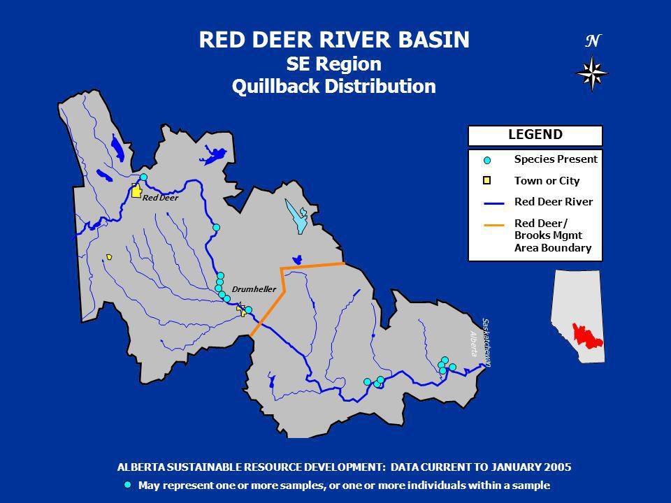 RED DEER RIVER BASIN SE Region Quillback Distribution N Saskatchewan Alberta LEGEND Species Present Town or City Red Deer River Red Deer/ Brooks Mgmt Area Boundary ALBERTA SUSTAINABLE RESOURCE DEVELOPMENT: DATA CURRENT TO JANUARY 2005 May represent one or more samples, or one or more individuals within a sample Drumheller Red Deer