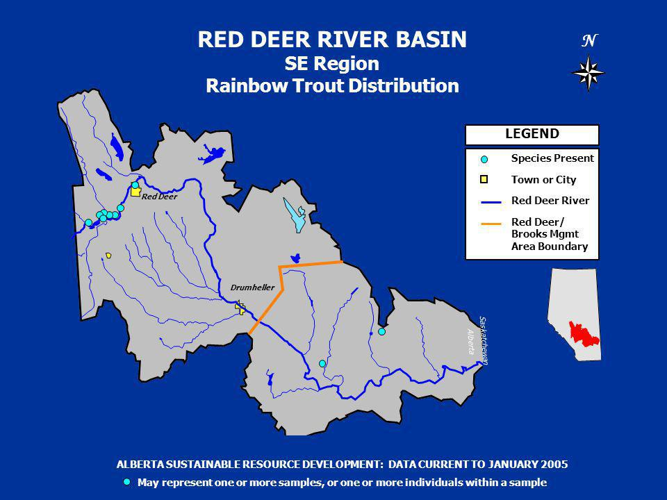RED DEER RIVER BASIN SE Region Rainbow Trout Distribution N Saskatchewan Alberta LEGEND Species Present Town or City Red Deer River Red Deer/ Brooks Mgmt Area Boundary ALBERTA SUSTAINABLE RESOURCE DEVELOPMENT: DATA CURRENT TO JANUARY 2005 May represent one or more samples, or one or more individuals within a sample Drumheller Red Deer