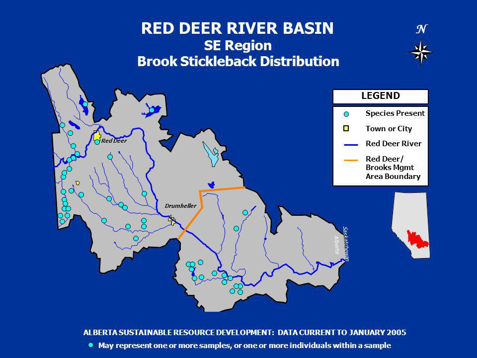 RED DEER RIVER BASIN SE Region Brook Stickleback Distribution N Saskatchewan Alberta LEGEND Species Present Town or City Red Deer River Red Deer/ Brooks Mgmt Area Boundary ALBERTA SUSTAINABLE RESOURCE DEVELOPMENT: DATA CURRENT TO JANUARY 2005 May represent one or more samples, or one or more individuals within a sample Drumheller Red Deer