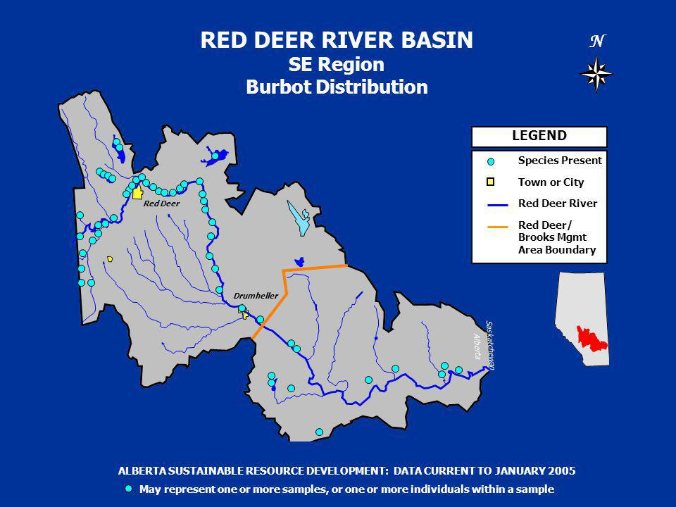 RED DEER RIVER BASIN SE Region Burbot Distribution N Saskatchewan Alberta LEGEND Species Present Town or City Red Deer River Red Deer/ Brooks Mgmt Area Boundary ALBERTA SUSTAINABLE RESOURCE DEVELOPMENT: DATA CURRENT TO JANUARY 2005 May represent one or more samples, or one or more individuals within a sample Drumheller Red Deer