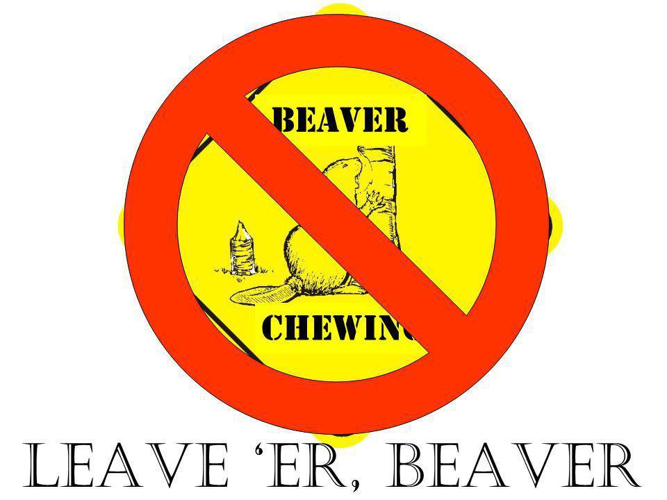 CHEWING beaver LEAVE 'ER, BEAVER