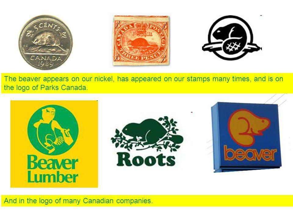 The beaver appears on our nickel, has appeared on our stamps many times, and is on the logo of Parks Canada.
