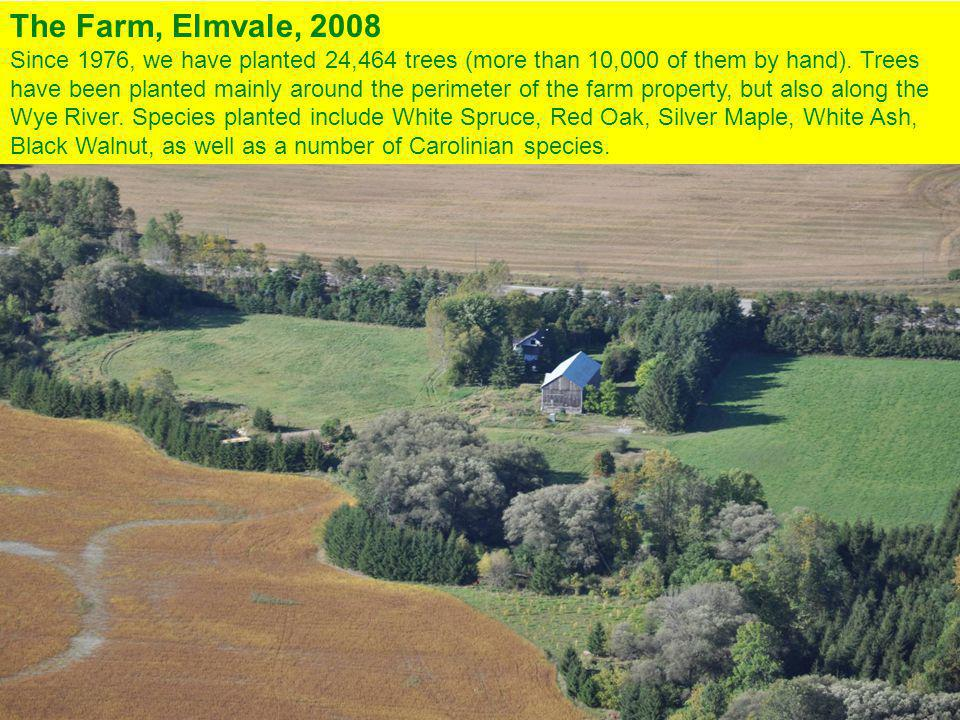 The Farm, Elmvale, 2008 Since 1976, we have planted 24,464 trees (more than 10,000 of them by hand).