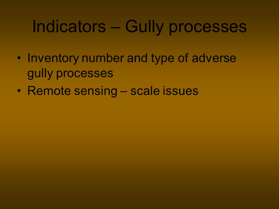 Indicators – Gully processes Inventory number and type of adverse gully processes Remote sensing – scale issues