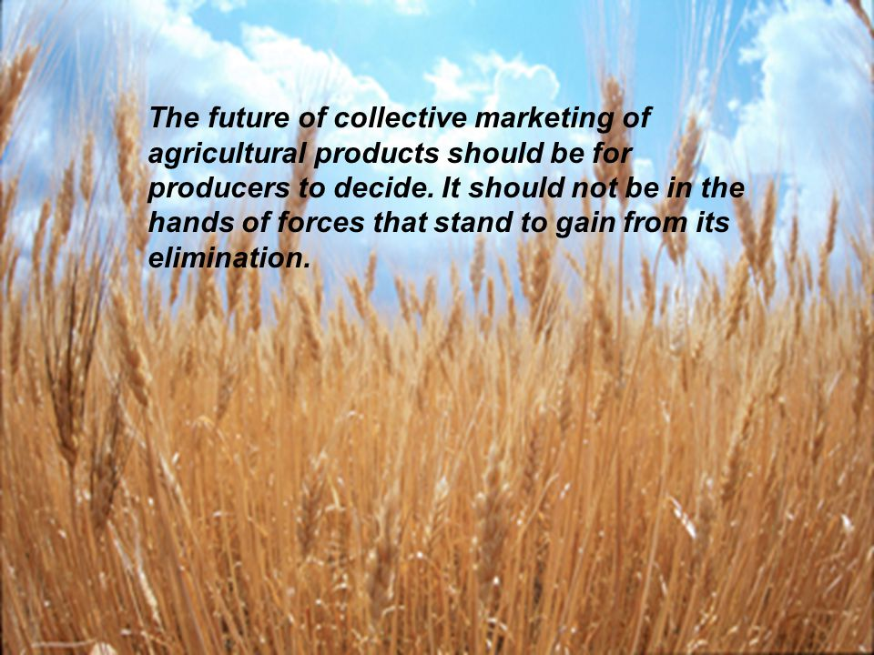 11 The future of collective marketing of agricultural products should be for producers to decide. It should not be in the hands of forces that stand t
