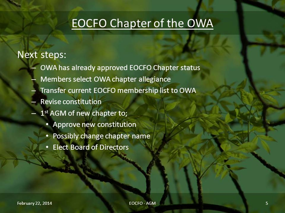 EOCFO Chapter of the OWA Next steps: – OWA has already approved EOCFO Chapter status – Members select OWA chapter allegiance – Transfer current EOCFO membership list to OWA – Revise constitution – 1 st AGM of new chapter to; Approve new constitution Possibly change chapter name Elect Board of Directors February 22, 2014EOCFO - AGM5