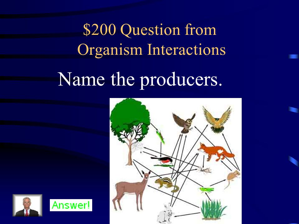 $200 Question from Potpourri What is the difference between primary and secondary succession?