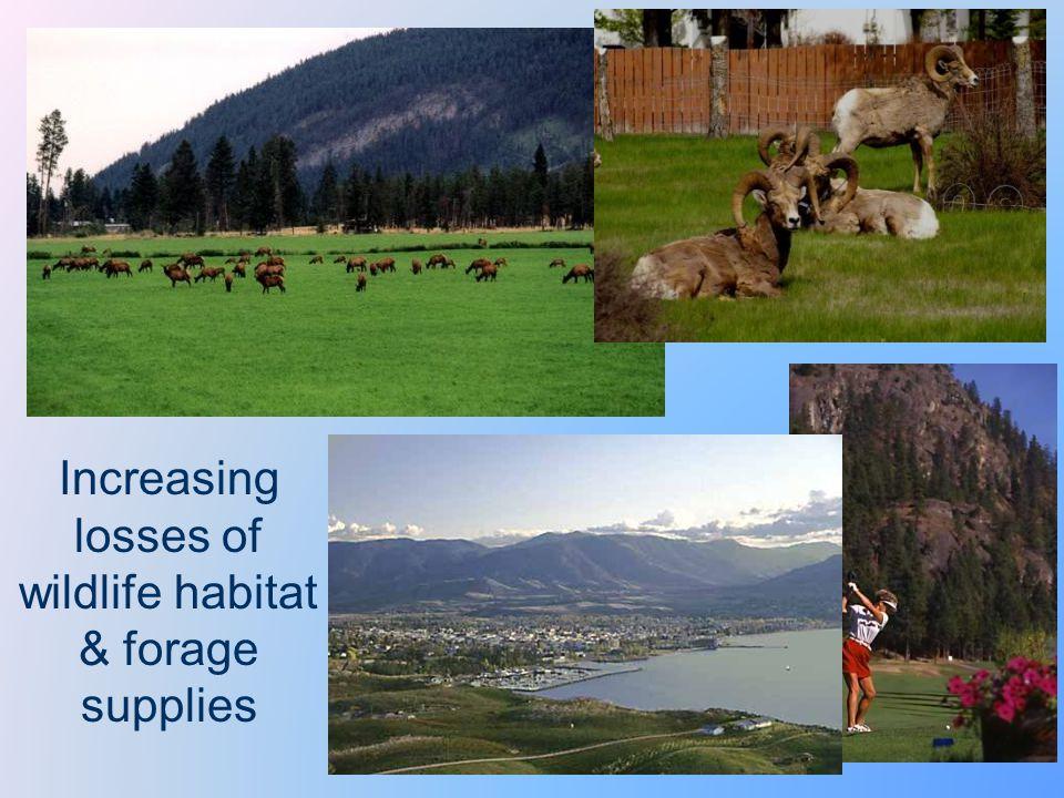 Increasing losses of wildlife habitat & forage supplies