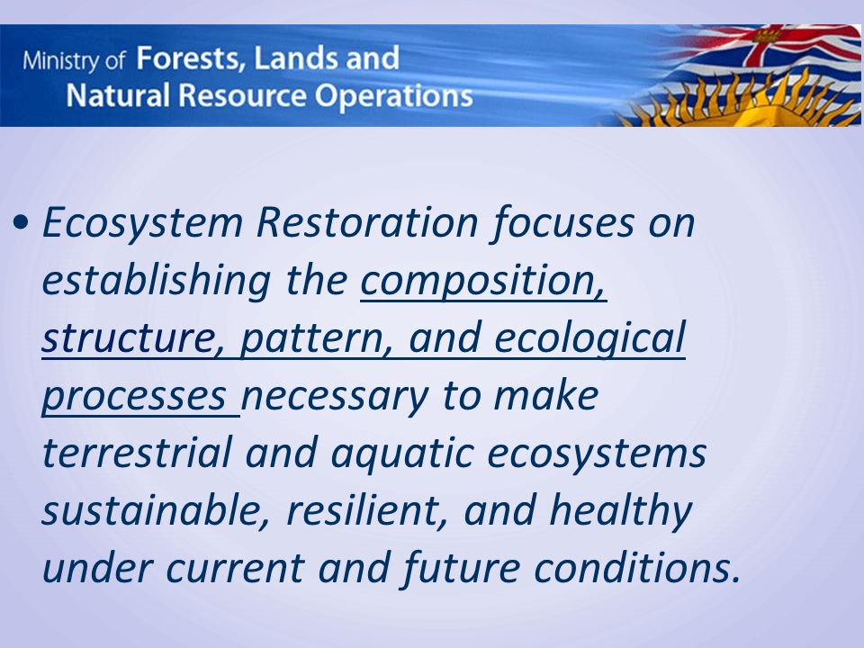 Ecosystem Restoration focuses on establishing the composition, structure, pattern, and ecological processes necessary to make terrestrial and aquatic ecosystems sustainable, resilient, and healthy under current and future conditions.