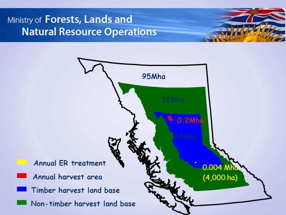 95Mha 62Mha 24Mha 38Mha Non-timber harvest land base Timber harvest land base Annual harvest area 0.2Mha 0.004 Mha (4,000 ha) Annual ER treatment