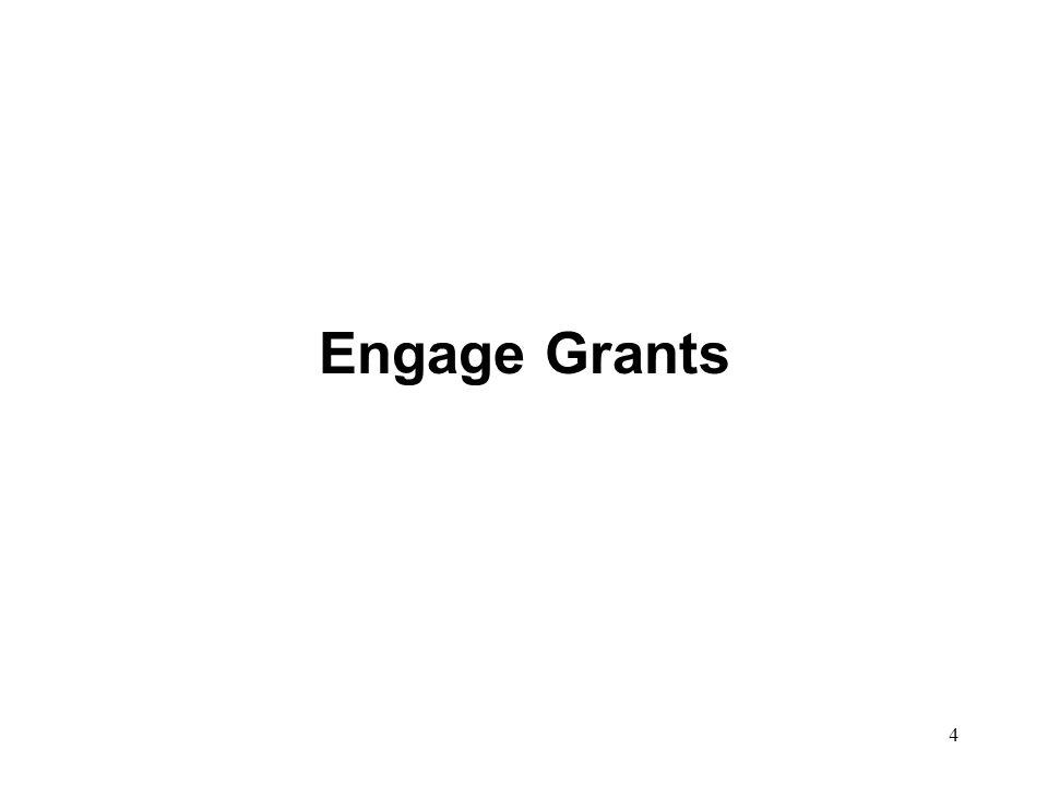 Engage Grants 4