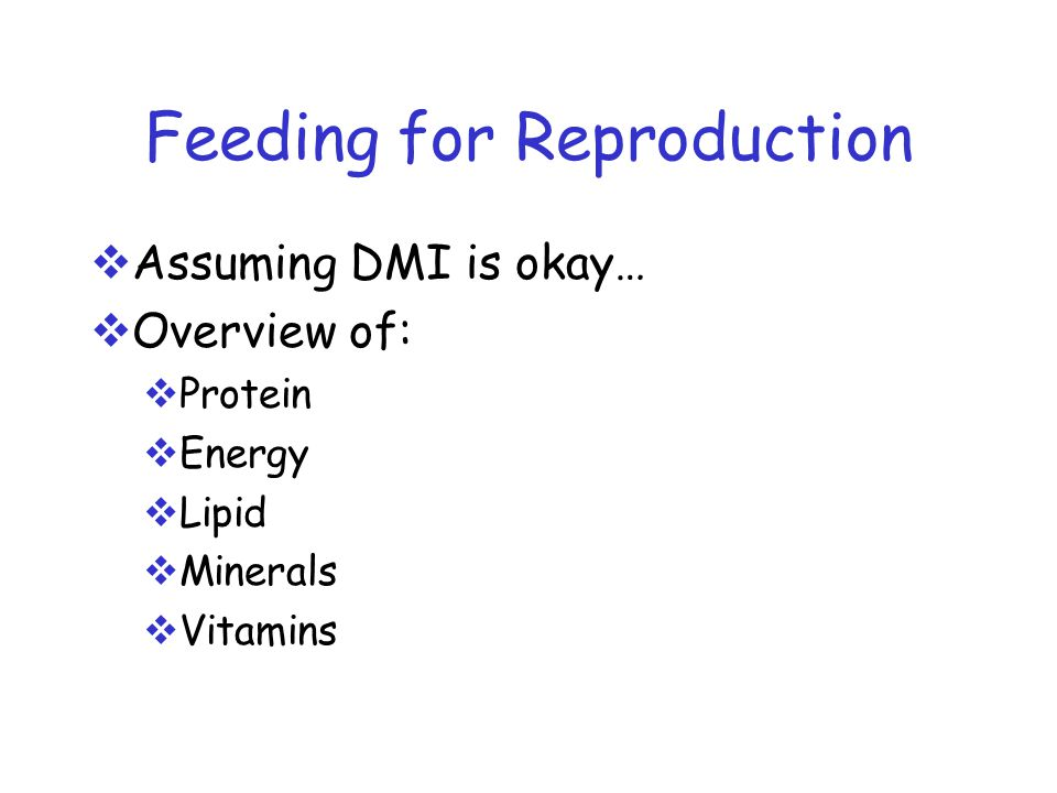 Feeding for Reproduction  Assuming DMI is okay…  Overview of:  Protein  Energy  Lipid  Minerals  Vitamins