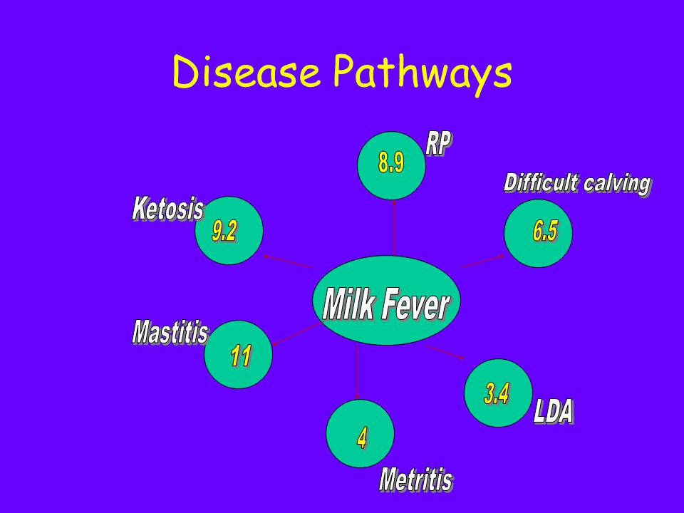 Disease Pathways