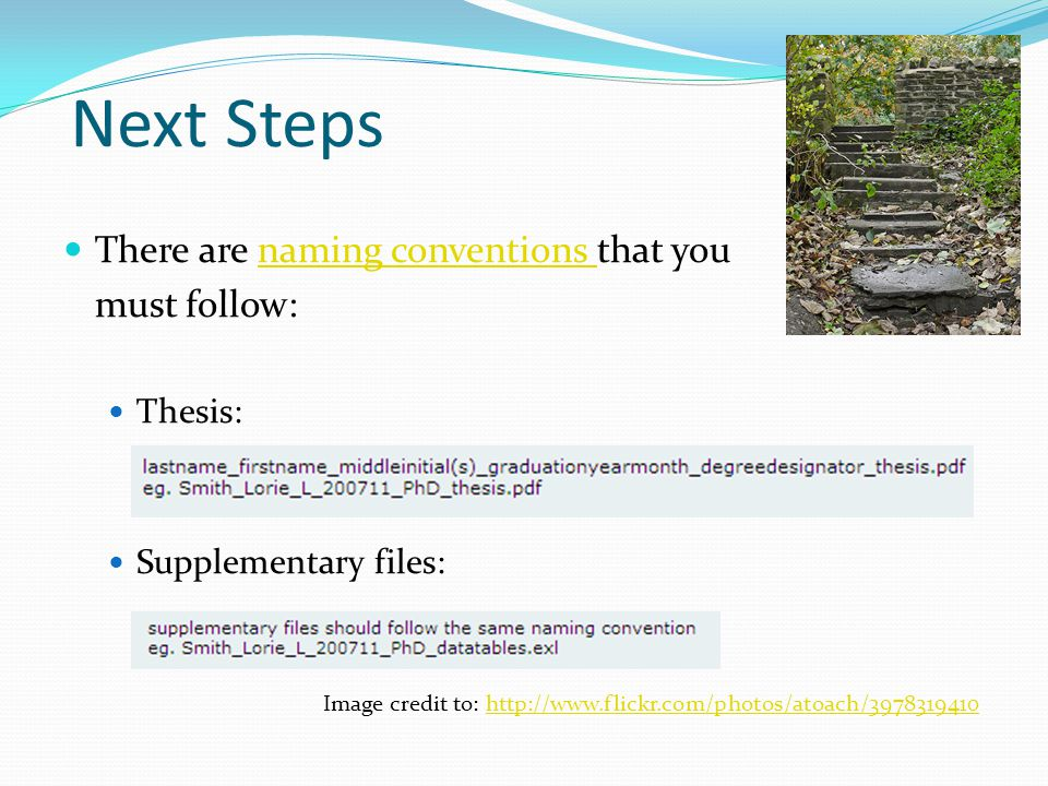 Next Steps There are naming conventions that younaming conventions must follow: Thesis: Supplementary files: Image credit to: http://www.flickr.com/photos/atoach/3978319410http://www.flickr.com/photos/atoach/3978319410