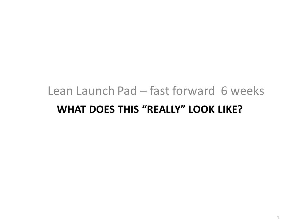 WHAT DOES THIS REALLY LOOK LIKE? Lean Launch Pad – fast forward 6 weeks 1