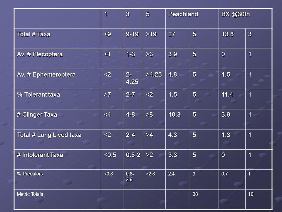 135Peachland BX @30th Total # Taxa <99-19>1927513.83 Av. # Plecoptera <11-3>33.9501 Av. # Ephemeroptera <2 2- 4.25 >4.254.851.51 % Tolerant taxa >72-7