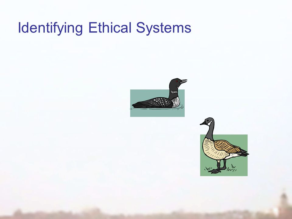 Identifying Ethical Systems