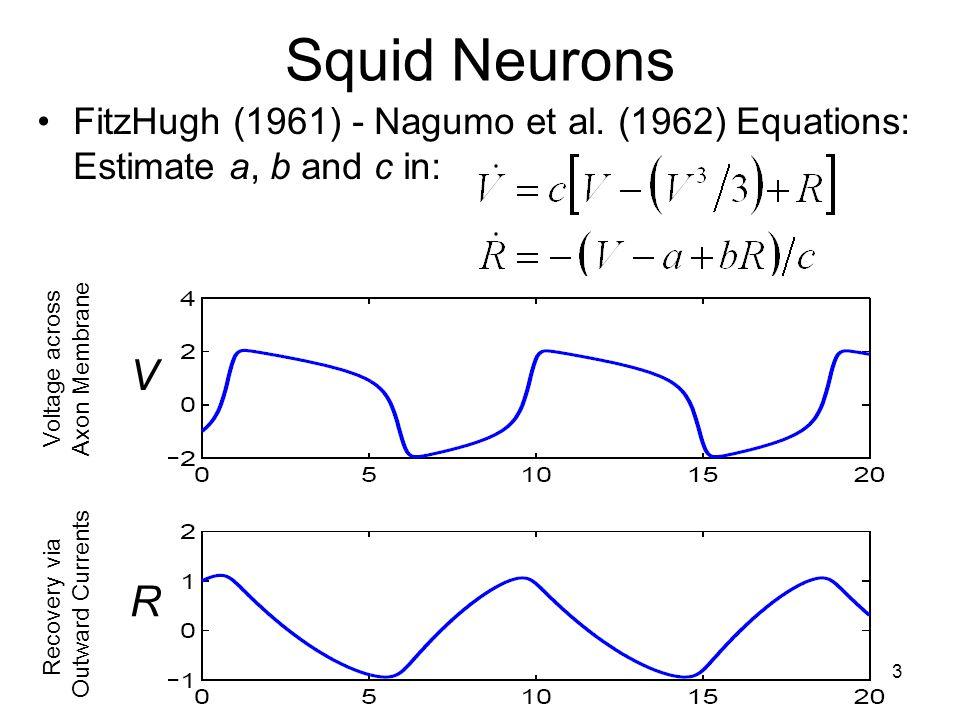 13 Squid Neurons FitzHugh (1961) - Nagumo et al.