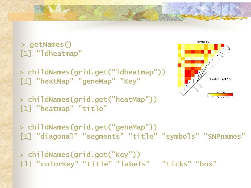 > getNames() [1] ldheatmap > childNames(grid.get( ldheatmap )) [1] heatMap geneMap Key > childNames(grid.get( heatMap )) [1] heatmap title > childNames(grid.get( geneMap )) [1] diagonal segments title symbols SNPnames > childNames(grid.get( Key )) [1] colorKey title labels ticks box