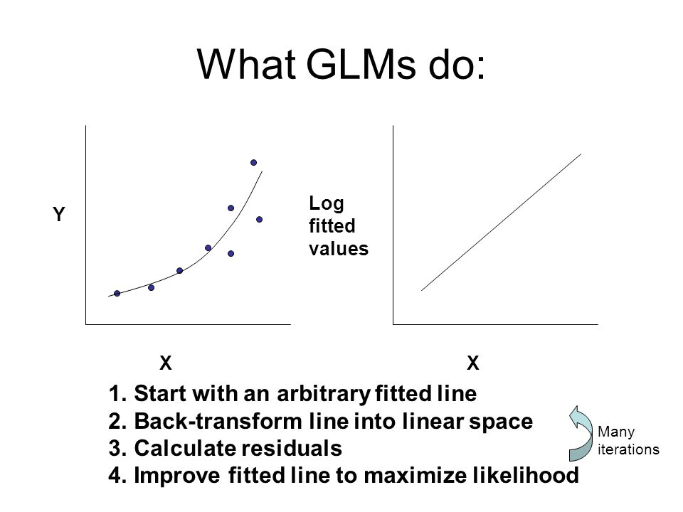 What GLMs do: X Y X Log fitted values 1.Start with an arbitrary fitted line 2.Back-transform line into linear space 3.Calculate residuals 4.Improve fitted line to maximize likelihood Many iterations