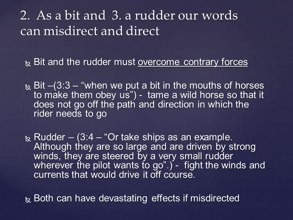  Bit and the rudder must overcome contrary forces  Bit –(3:3 – when we put a bit in the mouths of horses to make them obey us ) - tame a wild horse so that it does not go off the path and direction in which the rider needs to go  Rudder – (3:4 – Or take ships as an example.