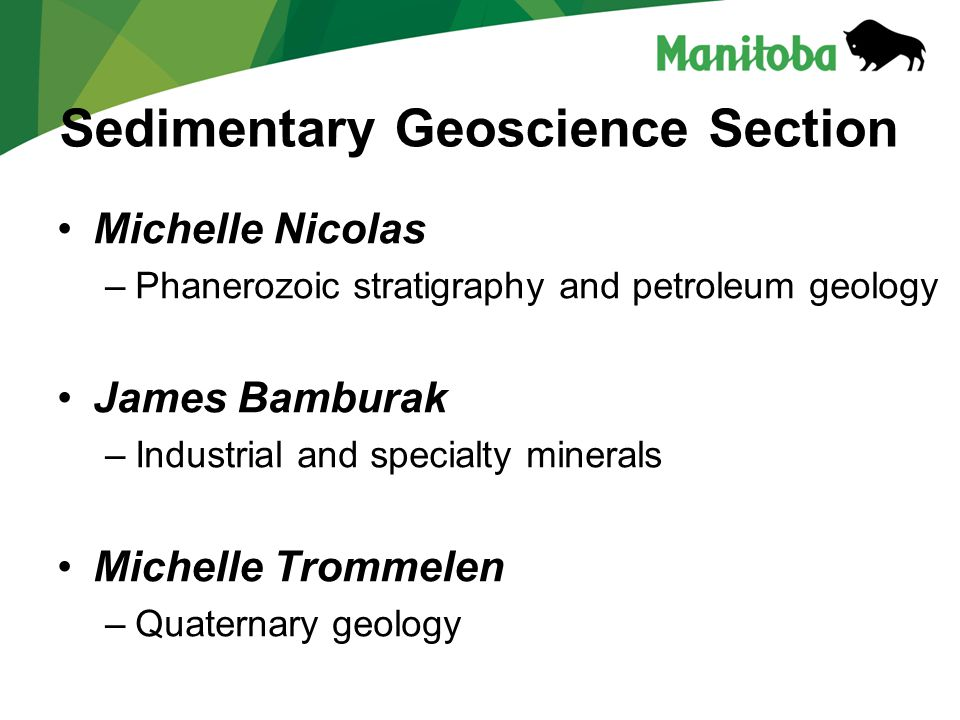 Sedimentary Geoscience Section Michelle Nicolas –Phanerozoic stratigraphy and petroleum geology James Bamburak –Industrial and specialty minerals Michelle Trommelen –Quaternary geology